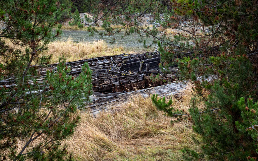 Looking through the trees at an abandoned mining dredge outside of Sumpter, Oregon.