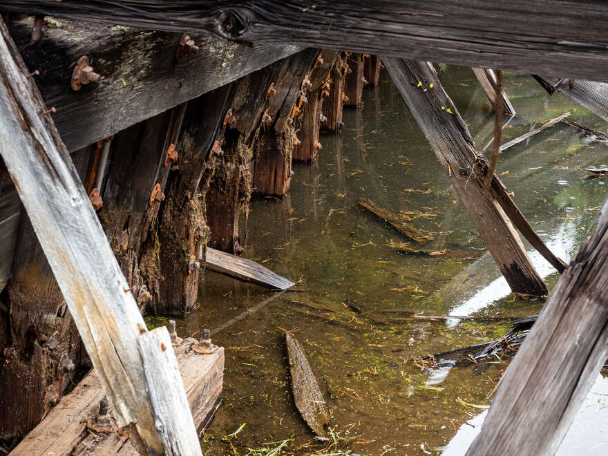 Rotting wooden beams inside the abandoned dredge.